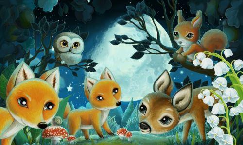 09 - Lesní zvířátka v noci