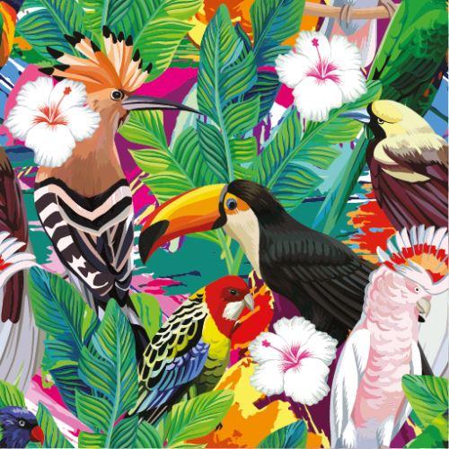 07 - Tropičtí ptáci v džungli