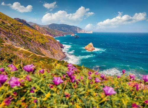 03 - Rozkvetlý svah Concali Su Terrainu Sardinie