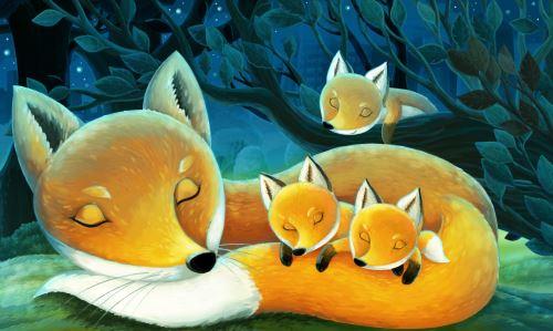 04 - Liščí rodinka v noci