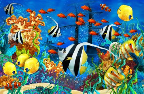 07 - Podmořský svět